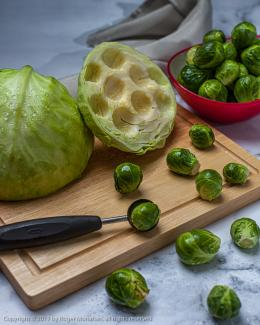Whimsical treatment ostensibly showing brussel sprouts being scooped out of a cabbage